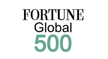 Fortune 500 company